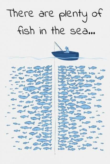 plenty-of-fish-in-the-sea-540x270.jpg